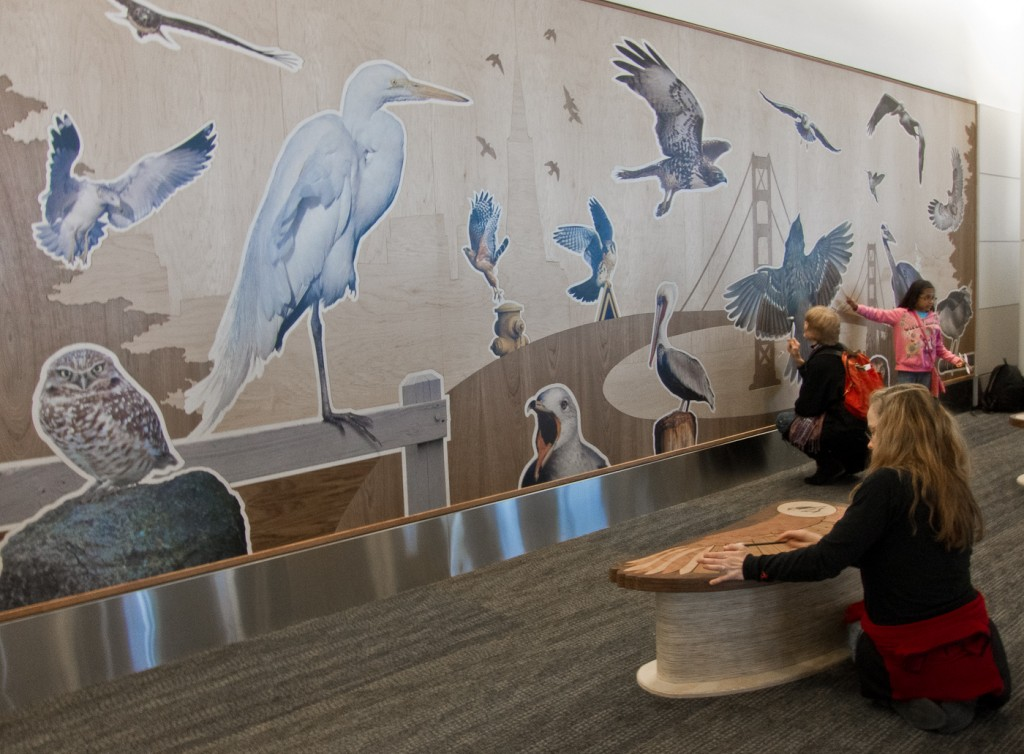 Walter Kitundu: Bay Area Bird Encounters