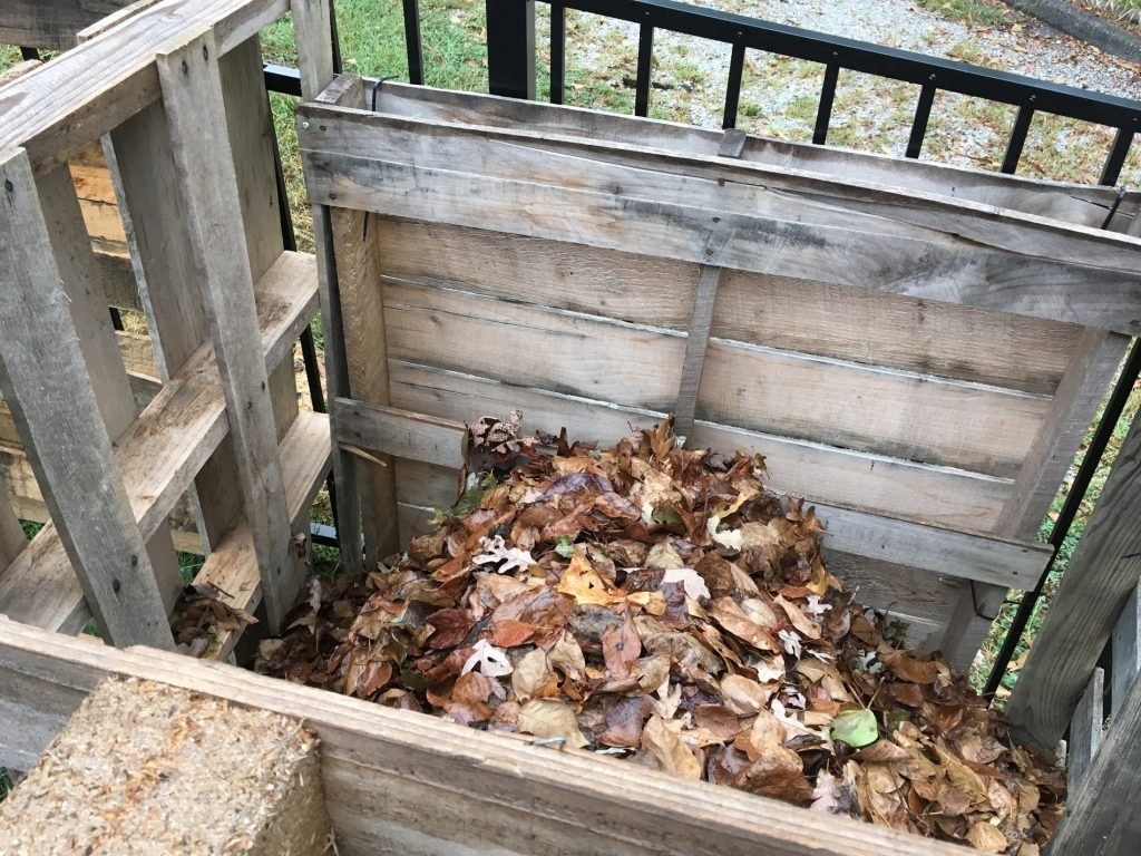Katie Hargrave, Leaf pile, 2016