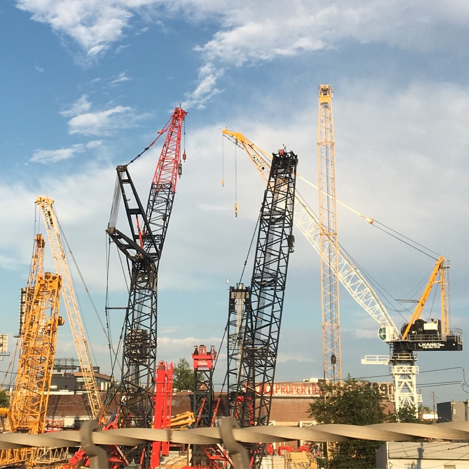 Marina Zurkow, Cranes awaiting assignments. View from the Brooklyn-Queens Expressway, Queens, New York, 2016
